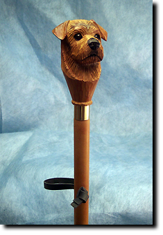 Adult Norfolk Terrier PRODUCT