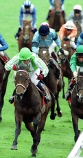 horse racing in ireland