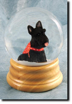 Adult Scottish Terrier PRODUCT