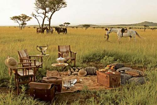 Description: Experience the cream of paradise - Tanzania safari
