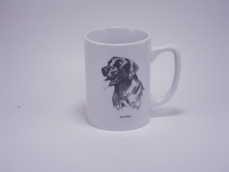 Lab Porcelain Mugs, 10oz, gift boxed - Click Image to Close