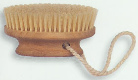 bath brush 5.jpg (15347 bytes)